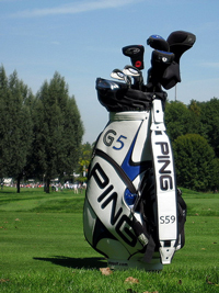 A photograph of a golf bag with a golf course in the background.