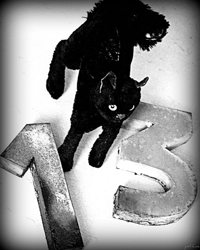 A drawing of a black cat standing near a large number thirteen