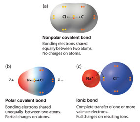 Ionic and covalent bonding texas gateway a molecule is the smallest unit of a covalent compound ccuart Image collections