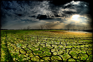 view of dry, cracked lake bed dotted by small patches of green, the sun shining through clouds onto a small pool of water in the distance