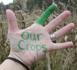 a person's palm outstretched, the words 'Our Crops' written in green with the index finger colored in green; the other fingers remain uncolored; dry, tall plants provide the backdrop for the hand