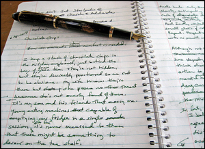 A photograph of a fountain pen lying on an open spiral notebook. The lined pages are filled with handwritten paragraphs.