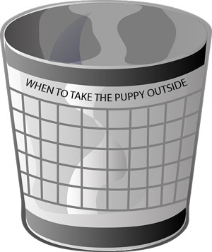 bucket with label of 'When to Take the Puppy Outside'