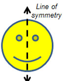 The image shows a smiling face with a vertical line of symmetry