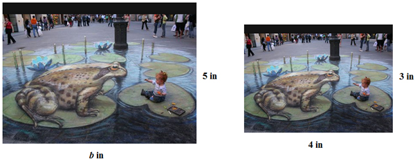 Chalk drawing of frog