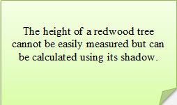 The height of a redwood tree cannot be easily measured, but can be calculated using its shadow.
