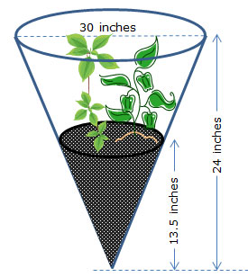 cone-shaped terrarium with dimensions labeled