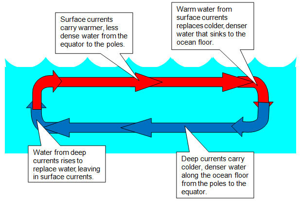 Simple diagram of ocean currents block and schematic diagrams the sun and convection currents texas gateway rh texasgateway org why are there ocean currents world map ocean currents gumiabroncs Images