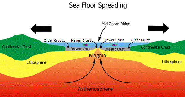 Sea Floor Spreading Labeled Diagram